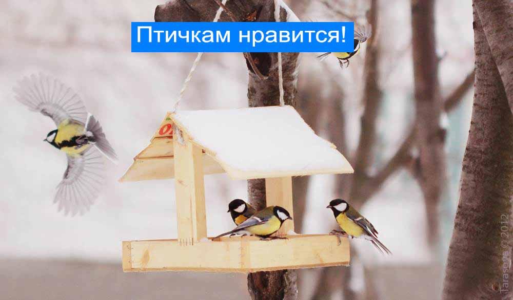 Материалы кормушки для птиц