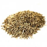 Овсяница луговая (семена)