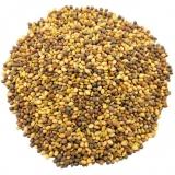 Клевер луговой (семена)