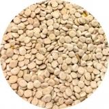 Семена люпина, от 30 кг