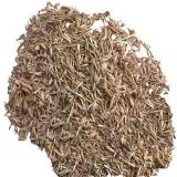 Семена житняк